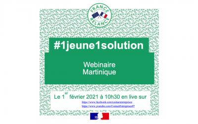 Webinaire #1jeune1solution le 1er février 2021 de 10h30 à 12h30